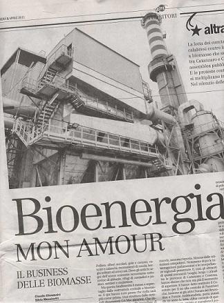 bionergie biomasse